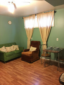 Cute Freshly Painted 1 Bedroom Basement Suite Private Entrance Moose Jaw Regina Area image 4