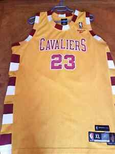 Authentic NBA Swingman (Stitched) Jerseys For Sale! London Ontario image 5