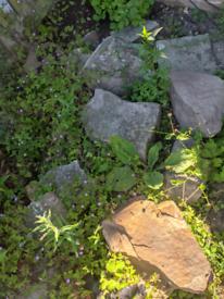 FREE garden rocks and stones