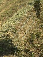 2nd cut alfalfa square hay bales