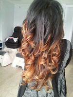 Hair Color and Cut Specials