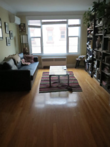 SUBLET Bright, big apartment W/ fantastic kitchen in W. Broadway