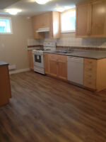 Lower Level of the House (Call Tanya 403-350-1026)