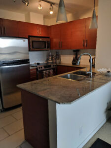 Amazing 2 bed 2 bath Condo on the top floor for rent!