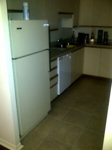 $980+ Utilities (Hydro) 55 Green Valley Drive, 1BR-820 Sq.Ft Kitchener / Waterloo Kitchener Area image 7