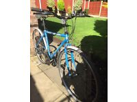 adults ridgeback road bike