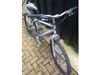Men's Dawes monkey push bike
