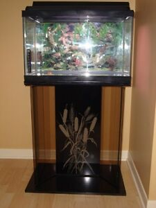 Fish tank on a tinted glass pedestal