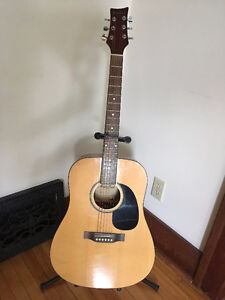 Beaver Creek acoustic guitar with hard case