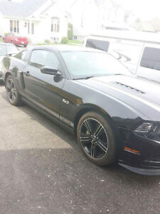 Ford Mustang C/S 2014