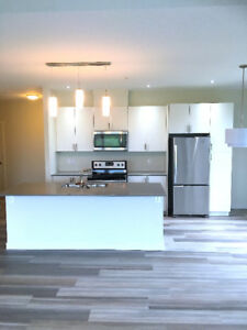 NEW LARGE 1 BEDROOM WITH CATHEDRAL CEILINGS/LARGE BALCONY