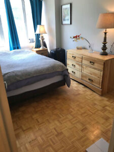 Bedroom for rent in 2 bedroom - bright, by subway (Yonge & Eg)