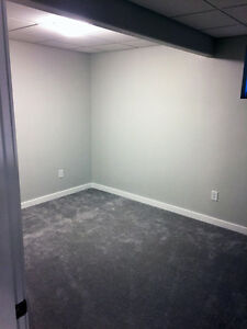 Jan1-Brand new,entire basement suite with shared Kitchen&Laundry Edmonton Edmonton Area image 5