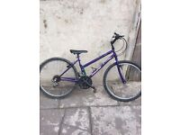 Mountain purple bike 26 inch
