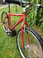 Raleigh alloy frame reto mountain bike gwo