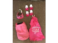 Puppy or small girl dog clothes bundle. Never worn.