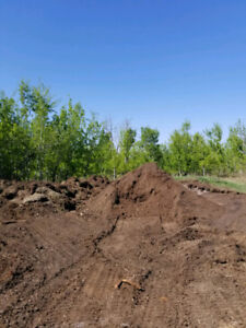 Old Cattle manure/topsoil