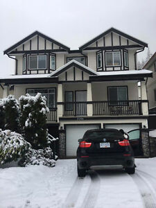 Cozy Whole House in Westwood Plateau - Available Now!
