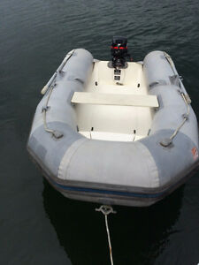 Avon 310 Rib with 15 HP Mercury OB
