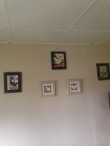 roosters, ornaments, pictures