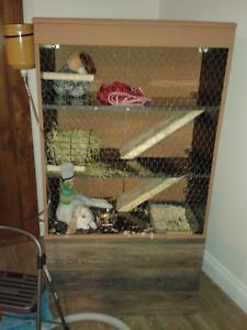 Cage à lapin intérieur