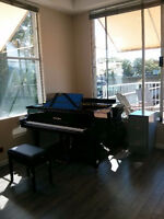 PIANO and MUSIC THEORY