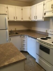 ADULT ONLY 1 BEDROOM WITH RECENT UPGRADES IN SILVERWOOD