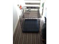 Dog. Crate