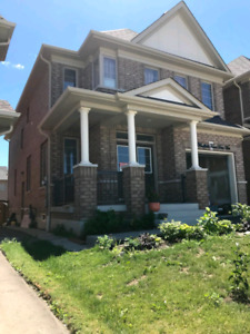 brand new One bedroom basement apartment with separate entrance