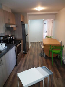 Brand New Furnished Amazing! Downtown McGill Ghetto 5 1/2 (3 BR)