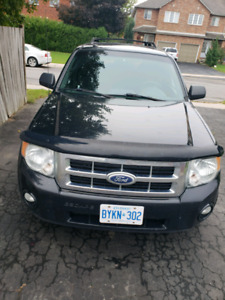 2010 Ford Escape FWD XLT