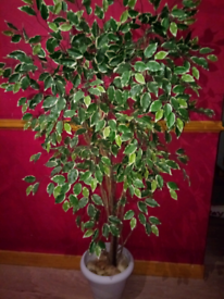 LARGE ARTIFICIAL TREE IN VARIEGATED LEAF VARIETY, INSIDE A GREY POT