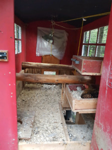 coop forsale