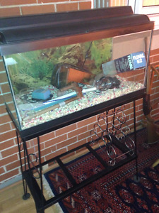 22 gallon fish tank complete with decorative steel stand