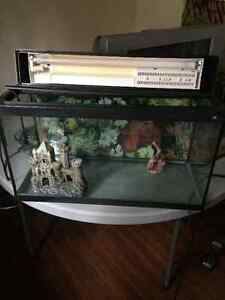 2 FISH TANKS+plus bunch of supplies- 100 OBO please give me call