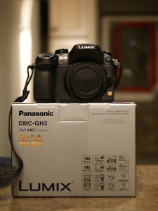 Like new Panasonic GH3