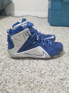 Lebron 12 Basketball Shoes
