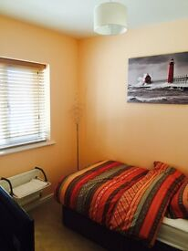 Room to rent in Lawley Village