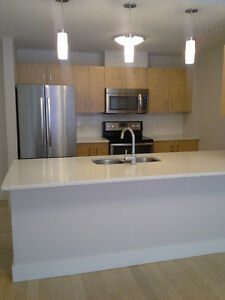 Luxery 2 bedroom with first month free