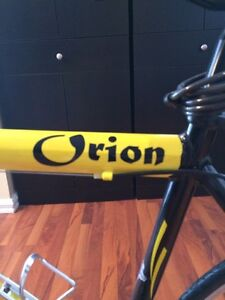 Brand new,   Orion VISION 14 speed bicycle.