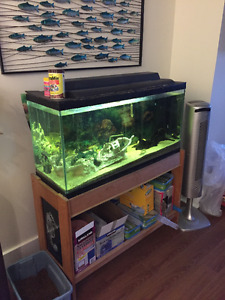 Fish Tank, stand, heater and all other accessories