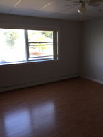 Bachelor Apartment with Murphy bed for Rent