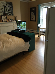 BEAUTIFUL LARGE BACHELOR APARTMENT FOR RENT SOUTH END HALIFAX