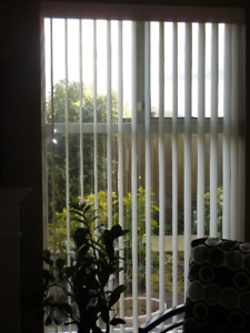 Vertical Blinds off white.