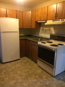 1 bedroom unfurnished basement suite, all utilities included