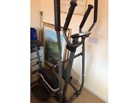 Exercise cycle/strider