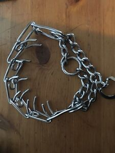 Prong collar for large dogs