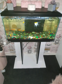 Tank stand and 3 fish