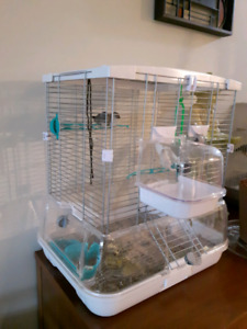 3 Zebra Finch, Cage and Acc.