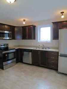 Fully renovated 2-bdrm duplex walking distance to Champlain Mall